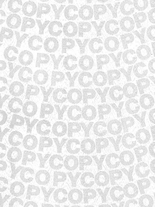 """Sicherheitspapier Copy: Kopie mit """"COPY"""" im Hintergrund"""